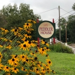 black eyed susans with a sign