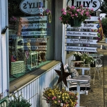 Lillys_Reflected-Waynesville 2